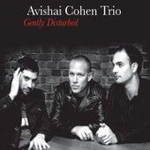 Gently Disturbed de Avishai Cohen Trio
