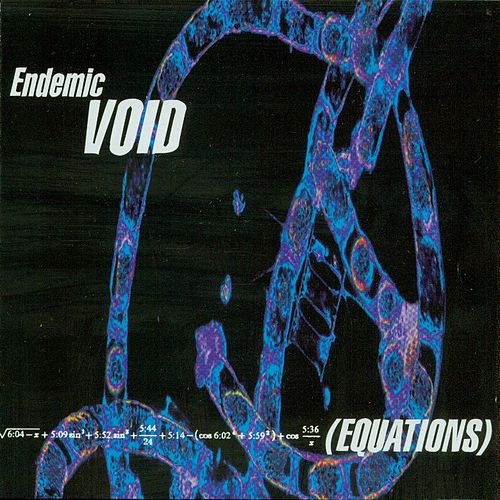 Equations by Endemic Void