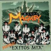 Popurri Exitos Mix de Banda Maguey