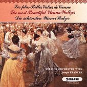Les plus belles valses de Vienne (The Most Beautiful Vienne Waltzes) de Johan Strauss