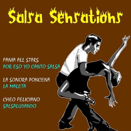 Salsa Sensations by Various Artists