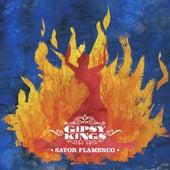 Savor Flamenco by Gipsy Kings