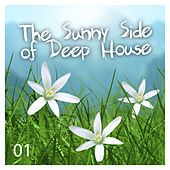 The Sunny Side of Deep House, Vol. 1 by Various Artists