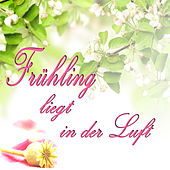 Frühling Liegt in Der Luft by Various Artists