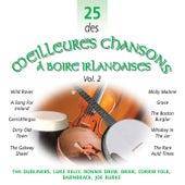 25 des Meilleures Chansons à Boire Irlandaises, Vol. 2 by Various Artists