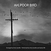 Ah, Poor Bird by Anne Janelle