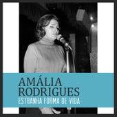 Estranha Forma de Vida de Amalia Rodrigues