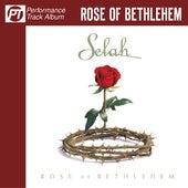 Rose of Bethlehem (Performance Track Album) by Selah