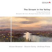 The Stream in the Valley by Various Artists
