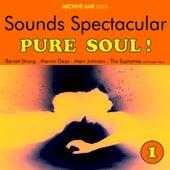Sounds Spectacular: Pure Soul ! Volume 1 von Various Artists
