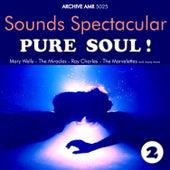 Sounds Spectacular: Pure Soul ! Volume 2 von Various Artists