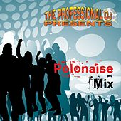 The Polonaise Mix by The Professional DJ