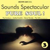 Sounds Spectacular: Pure Soul ! Volume 3 von Various Artists