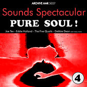 Sounds Spectacular: Pure Soul ! Volume 4 von Various Artists