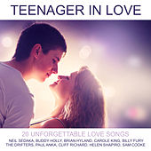 Teenager in Love by Various Artists