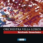 Orchestra Villa-Lobos by Mario Brunello