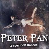 Le pays imaginaire (Peter Pan, Le spectacle musical) de Alessia