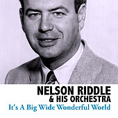 It's a Big Wide Wonderful World by Nelson Riddle