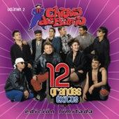 12 Grandes Exitos  Vol. 2 by Chicos De Barrio