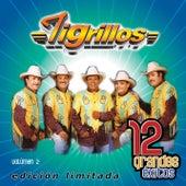 12 Grandes exitos Vol. 2 by Los Tigrillos