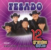 12 Grandes exitos  Vol. 1 by Pesado
