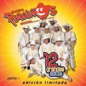 12 Grandes exitos Vol. 1 by Banda Pequeños Musical
