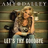 Let's Try Goodbye by Amy Dalley