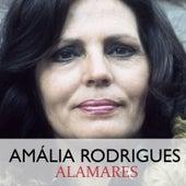 Alamares de Amalia Rodrigues
