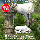 Music for Relaxation: Where Unicorns Dream by Various Artists