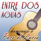 Entre Dos Aguas - Homenaje a Paco De Lucía de Various Artists
