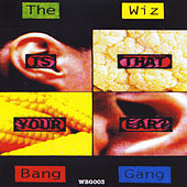 Is That Your Ear? de The Wiz Bang Gang