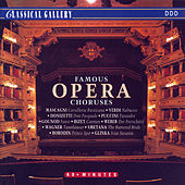 Famous Opera Choruses by Various Artists