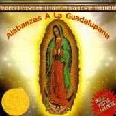 Coleccion De Exitos - Edicion Limitada de Alabanzas A La Guadalupana