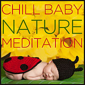 Chill Baby Nature: Meditation and Relaxation World Music for Baby's Rest and Peaceful Playtime by Various Artists