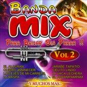 Banda Mix Para Bailar Sin Parar Vol. 2 by Banda Sinaloense