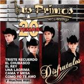 20 Temas de Los Primos De Durango