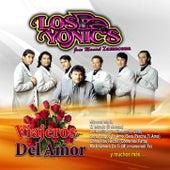 Viajeros Del Amor de Los Yonics
