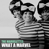 What a Marvel by The Marvelettes