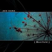 Manifold by Aes Dana
