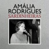 Sardinheiras de Amalia Rodrigues