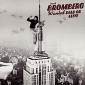 Wanted Dead Or Alive by David Bromberg