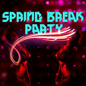 Spring Break Party by Various Artists