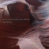 Terraform by Steve Roach