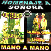 Homenaje a Sonora by Various Artists