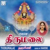 Thirumalai by Harini