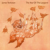 The Year Of The Leopard by James Yorkston