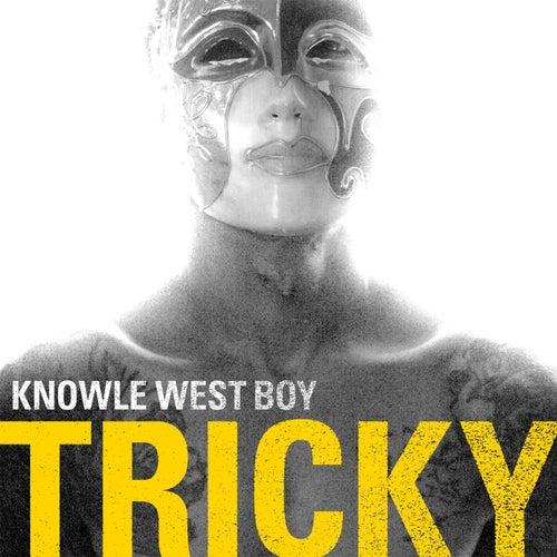 Knowle West Boy by Tricky