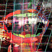 Today's Supernatural by Animal Collective