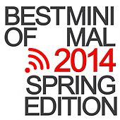 Best of Minimal 2014 (Spring Edition) by Various Artists
