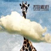 Silver Ladder de Peter Mulvey